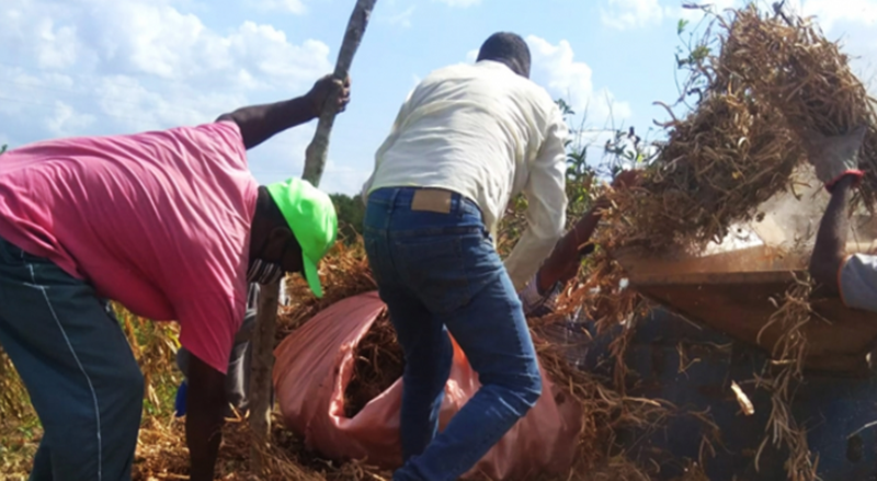 Máquinas da Prefeitura estão atendendo agricultores do povoado de Caboranga, no distrito de Bonfim de Feira Dovulgação